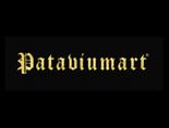 PATAVIUMART