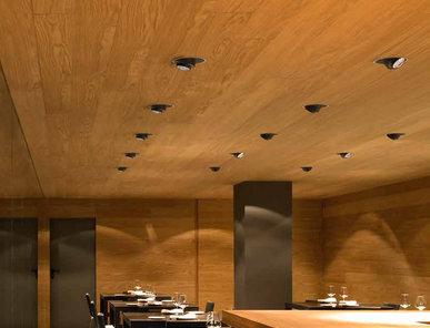 Итальянские светильники ANTHONY DOWNLIGHT фабрики FLOS